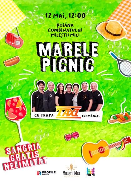 Marele Picnic с группой TAXI